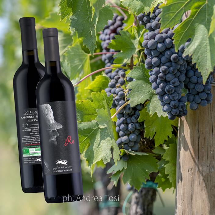 Italian natural wine