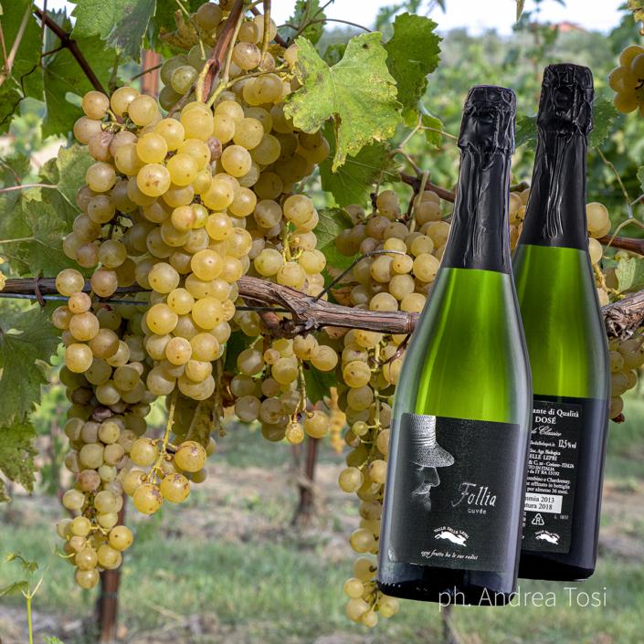 Vino spumante italiano vigna, Italian wine, fotografo specializzato ecommerce fotoritocco Pesaro