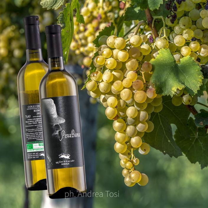 Italian wine, fotografo specializzato ecommerce fotoritocco fotomontaggio